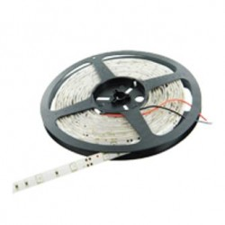 STRISCIA I-LIGHT LED STRIP IP20 5 MT 36W 6400K (LL-S505030F)