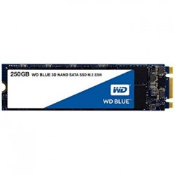 HARD DISK SSD 250GB BLUE M.2 (WDS250G2B0B)
